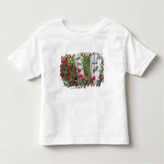 WA, Skagit Valley, Roozengaarde Tulip Garden Tee Shirt