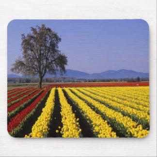 WA Skagit Valley Skagit Valley Tulip 2 Mouse Pad