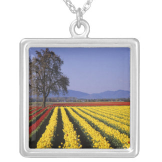 WA, Skagit Valley, Skagit Valley Tulip 2 Silver Plated Necklace