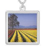 WA, Skagit Valley, Skagit Valley Tulip 2 Square Pendant Necklace