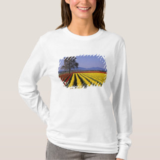 WA, Skagit Valley, Skagit Valley Tulip 2 T-Shirt