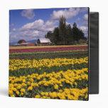 WA, Skagit Valley, Skagit Valley Tulip Binder