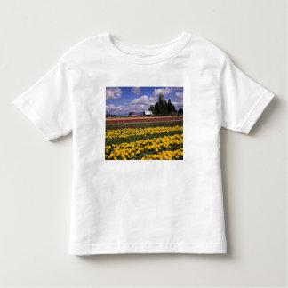 WA, Skagit Valley, Skagit Valley Tulip Shirt