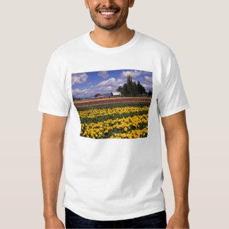 WA, Skagit Valley, Skagit Valley Tulip T Shirt