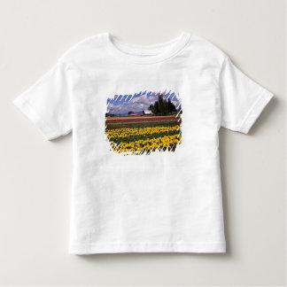 WA, Skagit Valley, Skagit Valley Tulip Tee Shirt