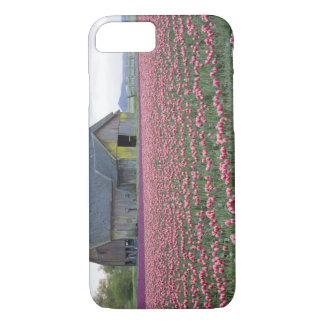 WA, Skagit Valley, Tulip Field and Barn iPhone 8/7 Case