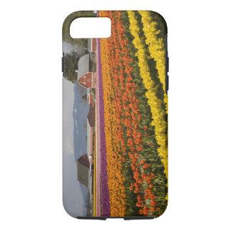 WA, Skagit Valley, Tulip fields in bloom, at iPhone 8/7 Case
