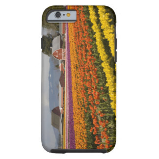 WA, Skagit Valley, Tulip fields in bloom, at Tough iPhone 6 Case