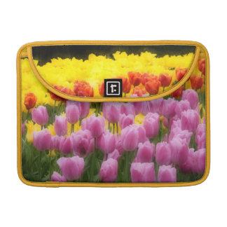 WA, valle de Skagit, jardín del tulipán de Fundas Para Macbooks