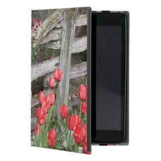 WA, valle de Skagit, jardín del tulipán de Roozeng iPad Mini Carcasa