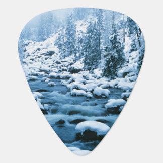 WA, Wenatchee National Forest, Cascade Guitar Pick