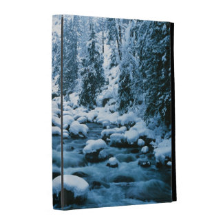 WA, Wenatchee National Forest, Cascade iPad Case