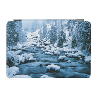 WA, Wenatchee National Forest, Cascade iPad Mini Cover