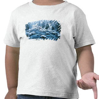WA Wenatchee National Forest Cascade Tshirts