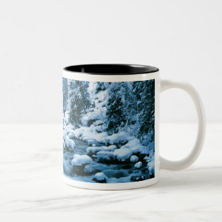 WA, Wenatchee National Forest, Cascade Two-Tone Coffee Mug