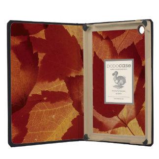 WA, Wenatchee National Forest, Maple leaf iPad Mini Case