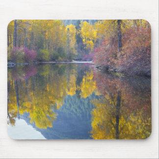 WA, Wenatchee National Forest, Whitepine Creek, Mouse Pad