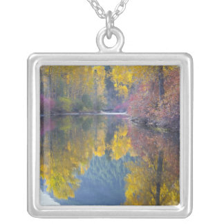 WA, Wenatchee National Forest, Whitepine Creek, Silver Plated Necklace