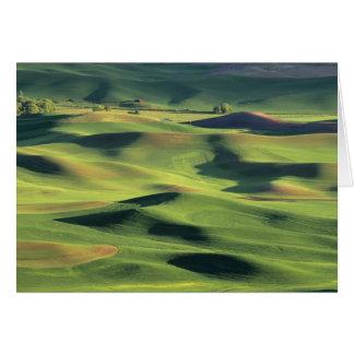 WA, Whitman County, Palouse Farmland, view Greeting Card