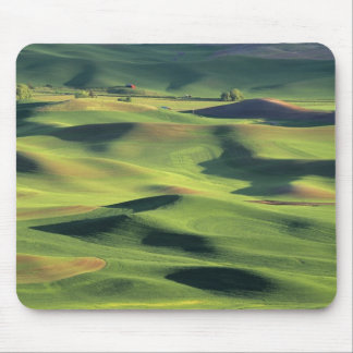 WA, Whitman County, Palouse Farmland, view Mouse Pad
