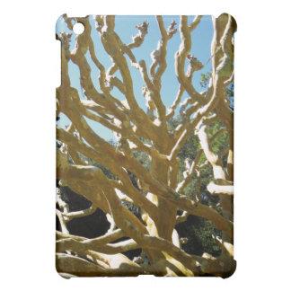 Wacky Branches iPad Case