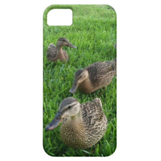 WADDLE iPhone 5 COVER