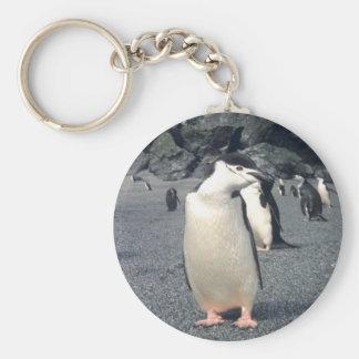 Waddle del pingüino de Chinstrap Llavero Redondo Tipo Pin