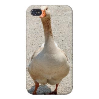 Waddling Goose iPhone Case