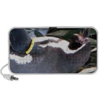 Waddling Penguin Speakers
