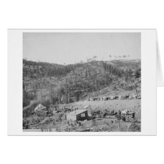 Wade and Jones Railroad Camp in Whitewood Canyon Card