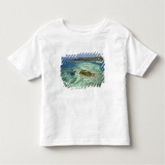Wadigi Island, Mamanuca Islands, Fiji Toddler T-shirt