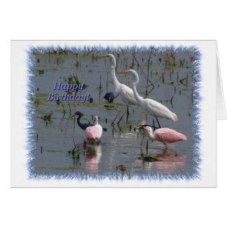 Wading Birds Birthday Card