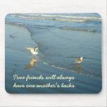 Wading Gulls Friends mousepad