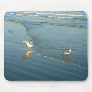 Wading Gulls mousepad