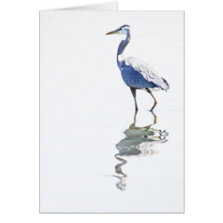 Wading in Light Card