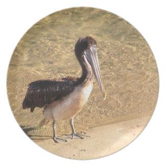 Wading Pelican Dinner Plate