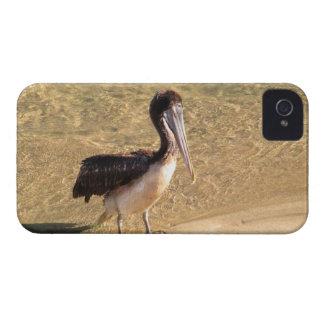Wading Pelican iPhone 4 Case-Mate Case