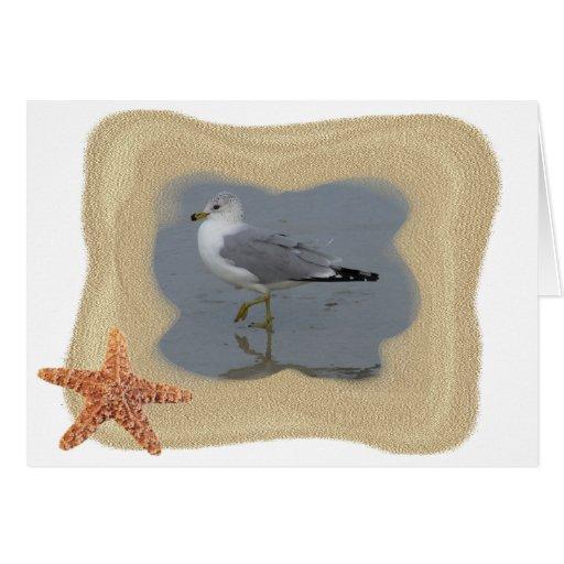 Wading Seagull 1 Greeting Card