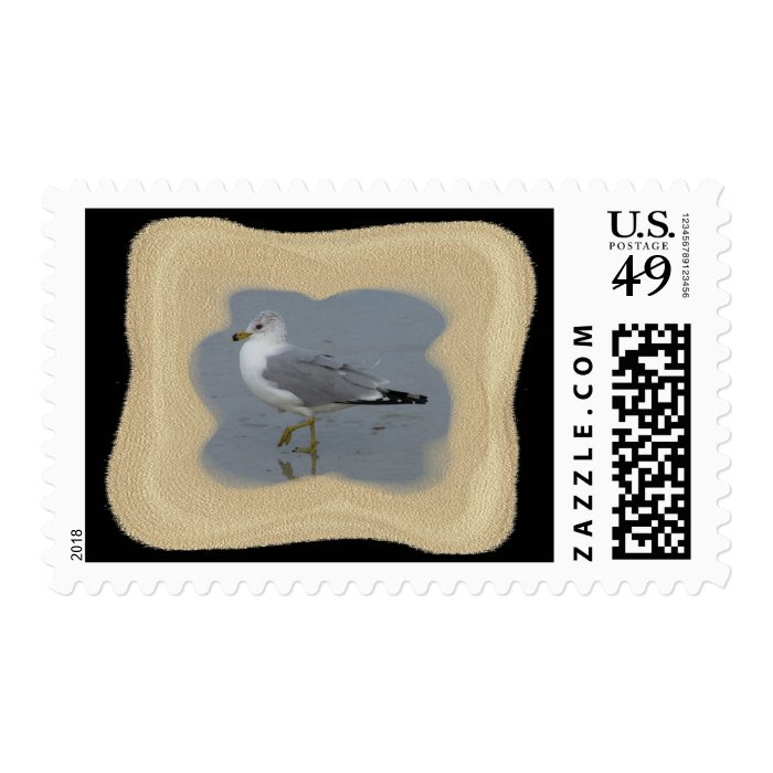 Wading Seagull 1 Stamp