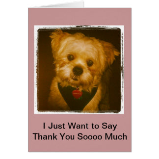 Wagging My Tail Im So Thankful Greeting Card