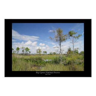 Wagon Wheel Road Landscape Poster
