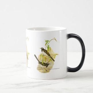 Wagtail de varios colores grande taza de café