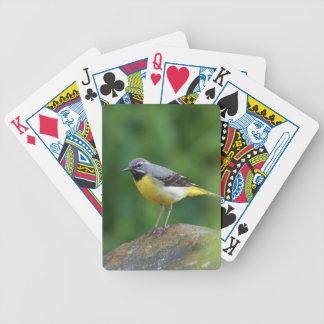 Wagtail gris - pájaro baraja de cartas