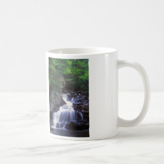 Wahconah Falls Coffee Mug