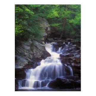 Wahconah Falls Postcard