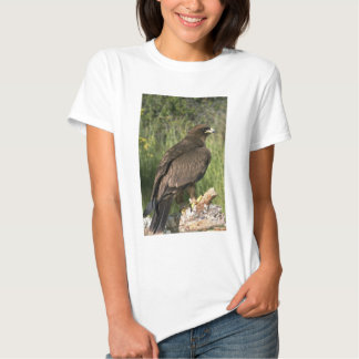 Wahlberg's Eagle T Shirt