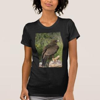 Wahlberg's Eagle Tshirts