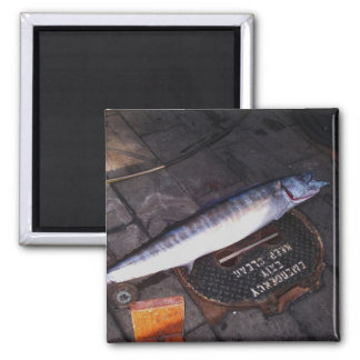 Wahoo Fish 2 Inch Square Magnet