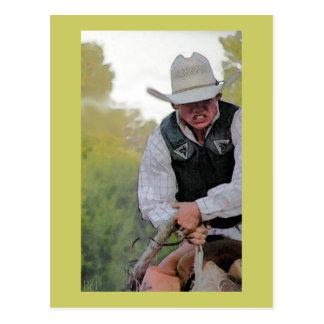 Wahoo Rodeo Postcard