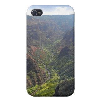 Waiamea Canyon Kauai iPhone 4/4S Cases